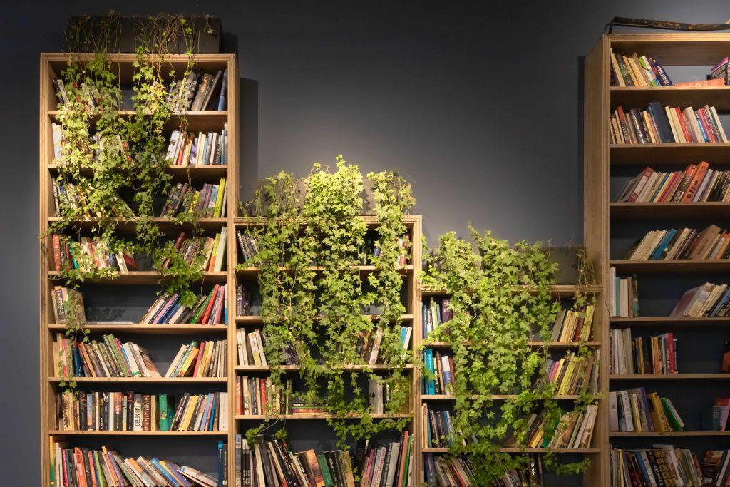 библиотека с много зеленина