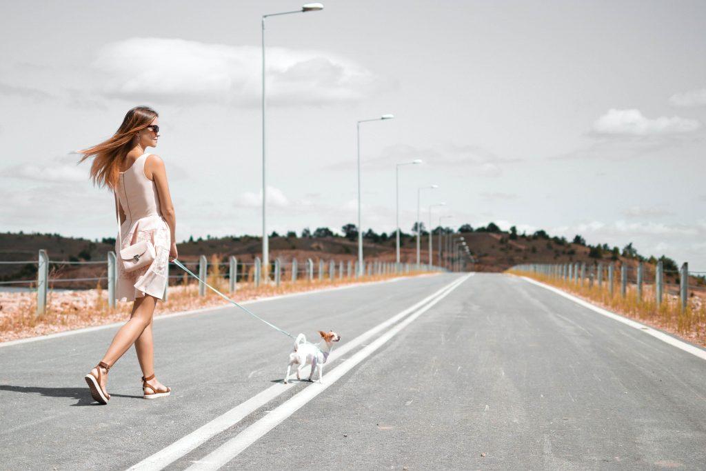 жена разхожда кучето си на главен път